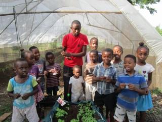 Little growers